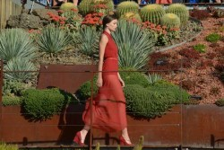 Event-Gallery-Royal-Botanic-Runway-by-Lucas-Dawson-Photography-4