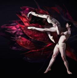 ballet05-729p